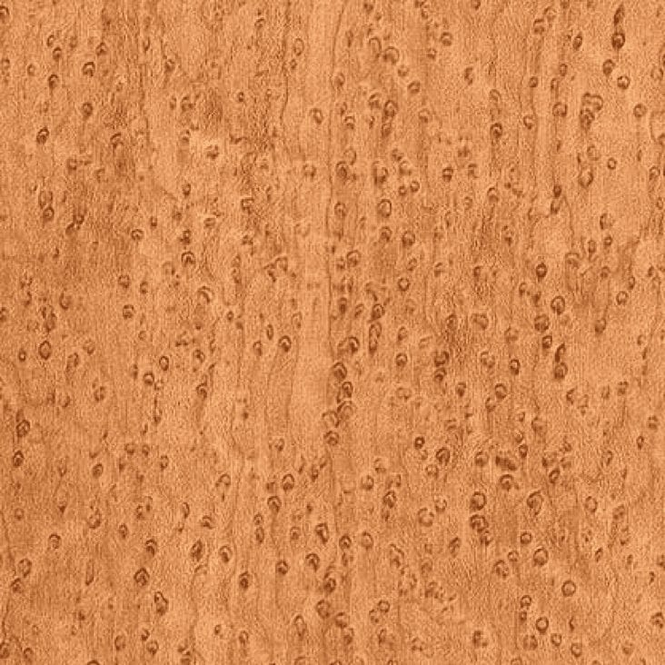 Maple Birds Eye - Exotic Hardwoods UK